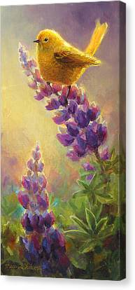 Golden Light 2 Wilsons Warbler And Lupine Canvas Print by Karen Whitworth