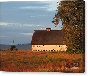 Golden Light At Nisqually Wildlife Refuge Canvas Print