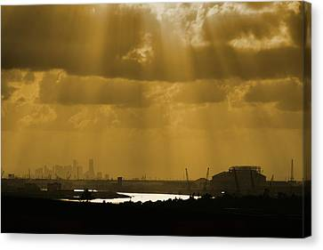 Golden Light Canvas Print by Linda Unger
