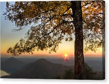 Benton Canvas Print - Golden Lights by Debra and Dave Vanderlaan