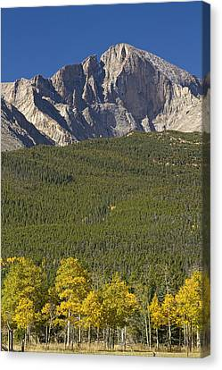 James Insogna Canvas Print - Golden Longs Peak View by James BO  Insogna