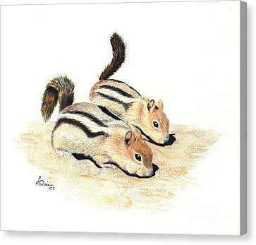 Golden-mantled Ground Squirrels Canvas Print by Lynn Quinn