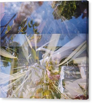 Golden Mean Holga Garden 1 Canvas Print