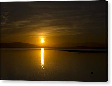 Canvas Print featuring the photograph Golden Morn by Richard Stephen