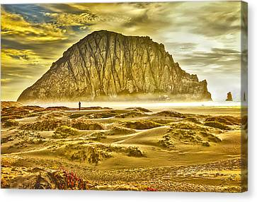 Golden Morro Bay Canvas Print