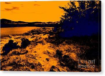 Golden Nights Canvas Print by Mickey Harkins