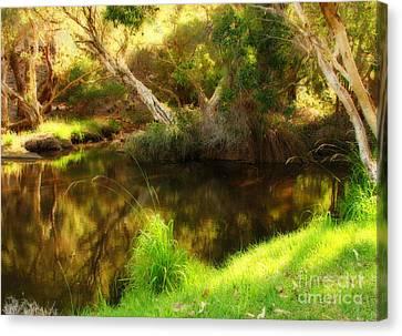 Golden Pond Canvas Print by Michelle Wrighton