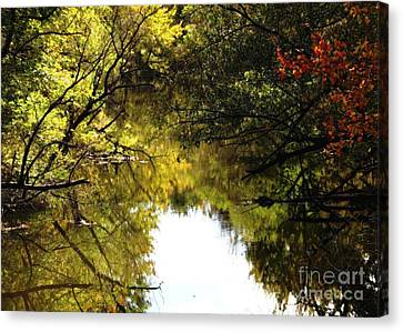 Golden Pond With Oil Painting Effect Canvas Print by Rose Santuci-Sofranko