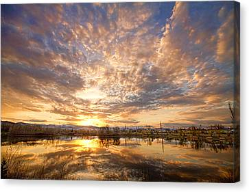 Golden Ponds Scenic Sunset Reflections 5 Canvas Print by James BO  Insogna