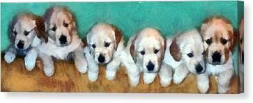 Golden Puppies Canvas Print by Michelle Calkins