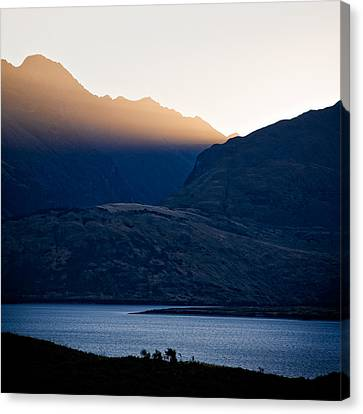 Golden Rays Canvas Print by Dave Bowman