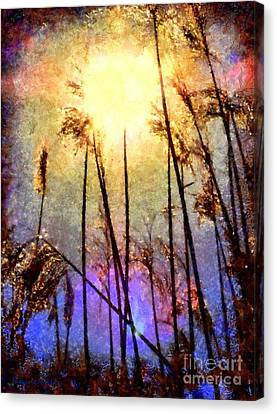 A Hot Summer Day Canvas Print - Golden Sun Rays On Beach Grass by Janine Riley