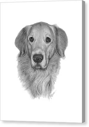 Golden Retriever Canvas Print by Joe Olivares
