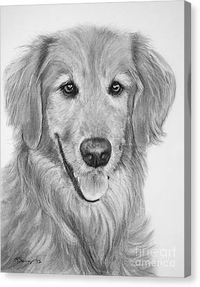 Golden Retriever Sketch Canvas Print