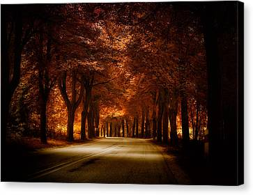 Golden Road Canvas Print by Marek Czaja