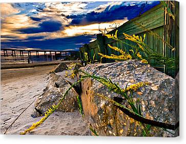 Canvas Print featuring the photograph Golden Rod Sunset Wooden Fence Yellow Wildflowers Blue Green Art by Eszra Tanner