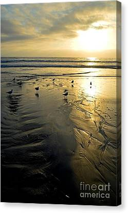 Golden Sandy Canvas Canvas Print