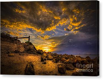 Golden Shore Canvas Print by Marvin Spates