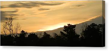 Golden Sky Canvas Print by Ione Hedges