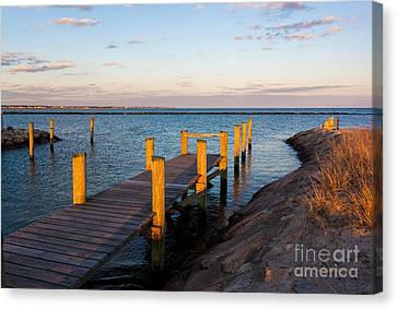 Golden Sound Canvas Print by Michelle Wiarda