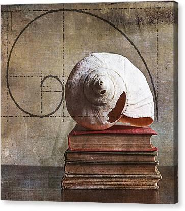 Golden Spirals Canvas Print