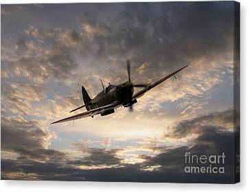 Golden Spitfire Canvas Print