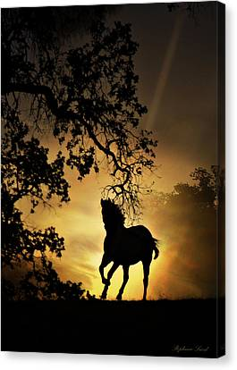 Horse Lover Canvas Print - Golden by Stephanie Laird