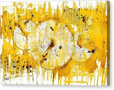 Golden Sun Rise - 1290.121912 Canvas Print by Kris Haas
