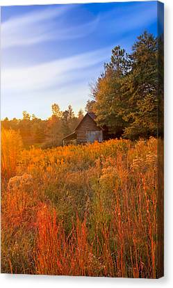 Golden Sunlight On A Fall Morning - North Georgia Canvas Print by Mark E Tisdale