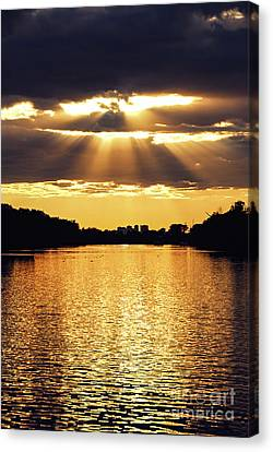 Golden Sunrays Canvas Print