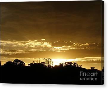 Golden Sunrise Canvas Print by Bev Conover