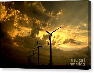 Canvas Print featuring the photograph Golden Sunset 2 by Jim McCain