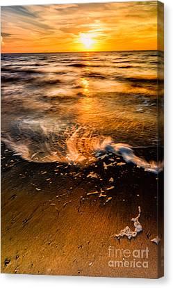Golden Sunset Canvas Print by Adrian Evans