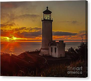 Golden Sunset At North Head Lighthouse Canvas Print by Robert Bales