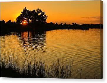 Golden Sunset Canvas Print by Chuck De La Rosa