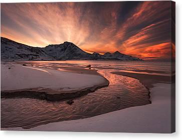 Golden Sunset Canvas Print by Jaroslav Zakravsky