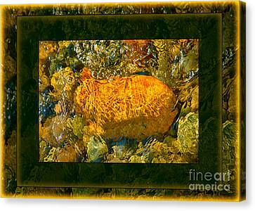 Golden Surprises In The Methow River Abstract Painting Canvas Print by Omaste Witkowski