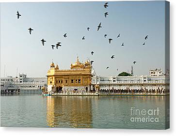Golden Temple In Amritsar Canvas Print by Yew Kwang