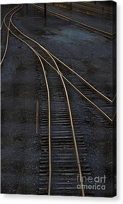 Train Tracks Canvas Print - Golden Tracks by Margie Hurwich