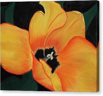 Golden Tulip Canvas Print by Anastasiya Malakhova