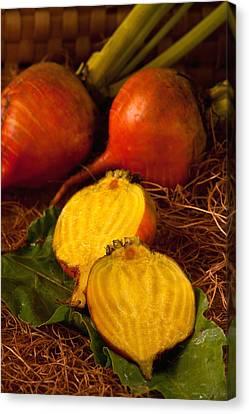 Golden Turnips Canvas Print