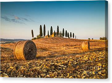 Golden Tuscany 2.0 Canvas Print by JR Photography
