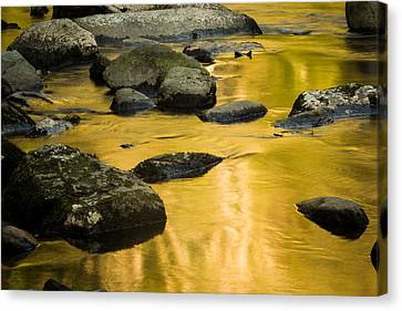 Canvas Print featuring the photograph Golden Water by Jay Stockhaus