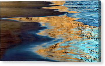 Golden Water Reflections Point Reyes National Seashore Canvas Print by Wernher Krutein