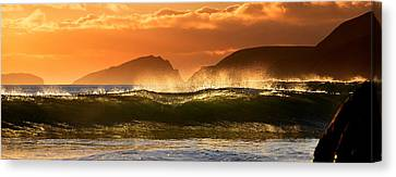 Golden Wave Canvas Print by Florian Walsh