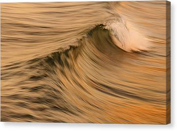 Golden Wave Of Hawaii Canvas Print by Tin Lung Chao