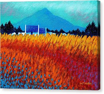 Golden Wheat Field Canvas Print by John  Nolan