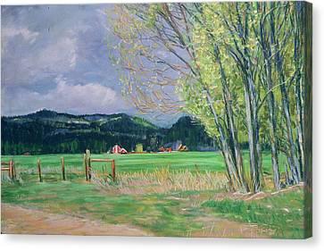 Golden Willows - Spring Canvas Print
