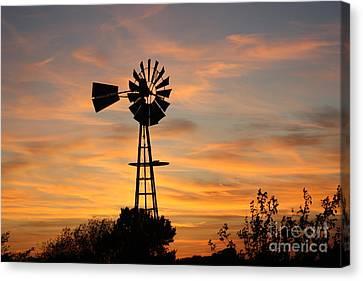 Golden Windmill Silhouette Canvas Print by Robert D  Brozek