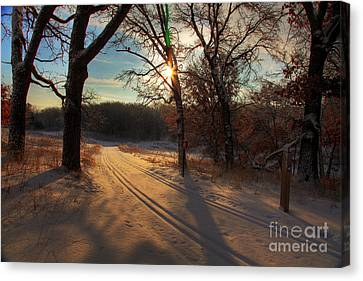 Golden Winter Morning Canvas Print by Wayne Moran